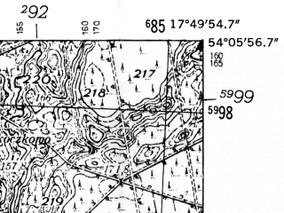 Reduced fragment of topographic map de--mb--025k--19_072-ams--(1952)--N054-06_E017-40--N054-00_E017-50; towns and cities Dziemiany