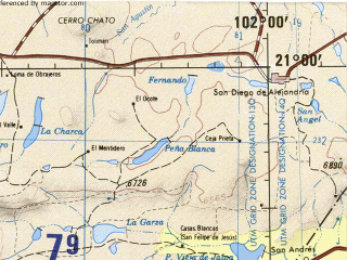 Download topographic map in area of Guadalajara Zapopan Ocotlan