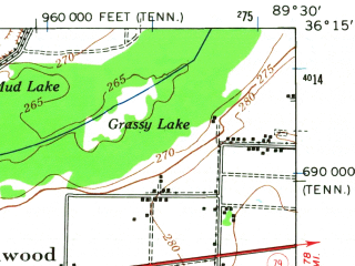 Reduced fragment of topographic map en--usgs--063k--052234--(1951)--N036-15_W089-45--N036-00_W089-30 in area of Whites Lake; towns and cities Caruthersville, Hayti