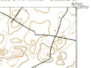 Reduced fragment of topographic map en--usgs--063k--060735--(1893)--N029-00_W082-15--N028-45_W082-00 in area of Lake Panasoffkee; towns and cities Coleman, Lake Panasoffkee, Wildwood