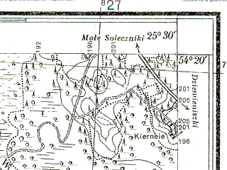 Reduced fragment of topographic map pl--wig--025k--P31S41-G--(1932)--N054-20_E025-20--N054-15_E025-30; towns and cities Shal'chininkay