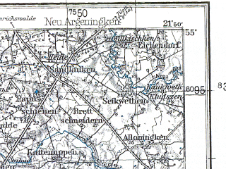 Reduced fragment of topographic map pl--wig--100k--P29S33--(1932)--N055-00_E021-20--N054-45_E021-50; towns and cities Zalesye