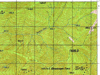 Reduced fragment of topographic map ru--gs--050k--k38-067-4--N042-10_E045-15--N042-00_E045-30; towns and cities Zemo-alvani, Duisi, Pshaveli