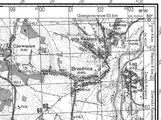 Reduced fragment of topographic map ru--gs--050k--m34-061-3--N050-10_E018-00--N050-00_E018-15; towns and cities Raciborz