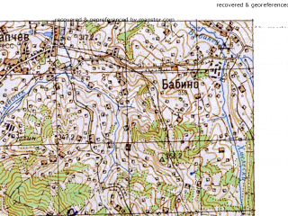 Reduced fragment of topographic map ru--gs--050k--m35-135-2--N048-20_E025-15--N048-10_E025-30; towns and cities Ispas, Karapchev, Korytno