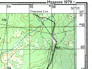 Reduced fragment of topographic map ru--gs--050k--o39-029-3--N059-10_E050-00--N059-00_E050-15