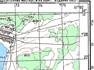 Reduced fragment of topographic map ru--gs--050k--o41-134-4--N056-10_E060-45--N056-00_E061-00; towns and cities Tyubuk