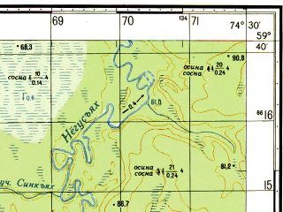 Reduced fragment of topographic map ru--gs--050k--o43-017-2--N059-40_E074-15--N059-30_E074-30